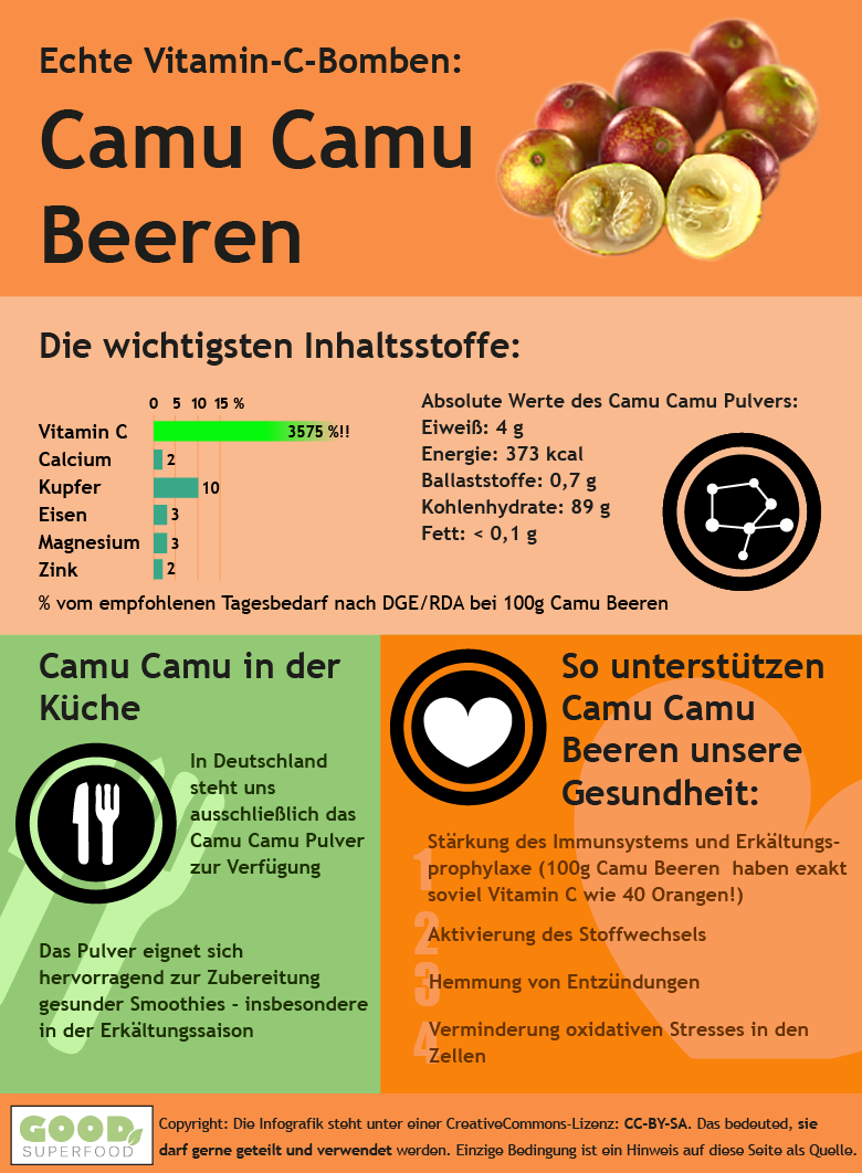 Infografik zur Camu Camu