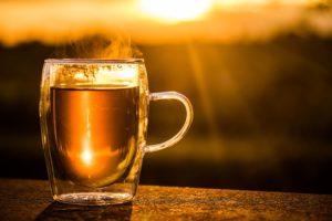 Damiana Tee – Dosierung, mögliche Nebenwirkungen und Wechselwirkungen