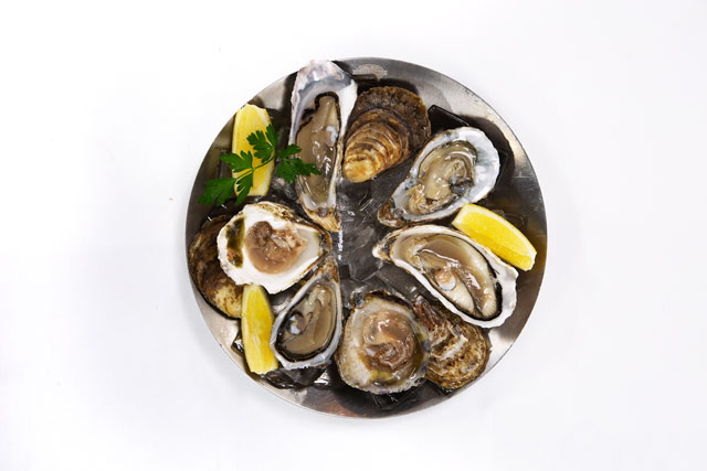 Austern im Restaurant Diekmann