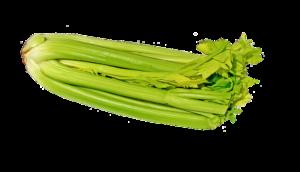 Sellerie roh essen – darf man Sellerie roh essen?