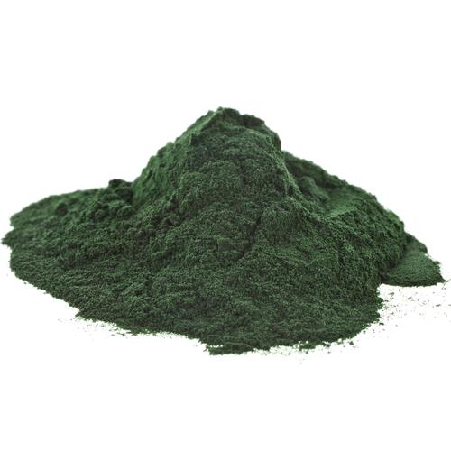 Spirulina Alge als Pulver