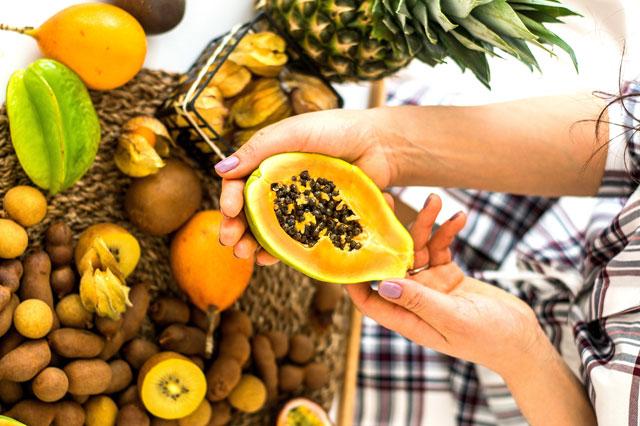 Papain als Enzym einer Papaya, wie sie in der Hand gehalten wird